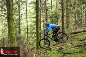 Canyon Strive AL 6.0 Race (5)