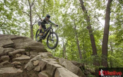 Specialized Levo FSR Comp Carbon : Agile, le bougre !